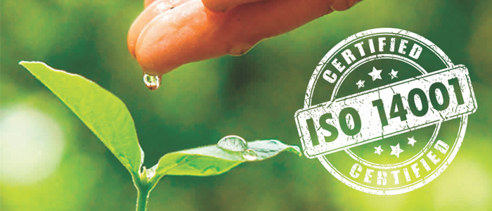 ISO 14001 Safety Consulting Services: Transition and Certification